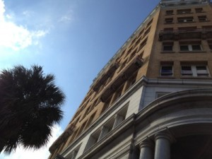 Palm tree and cool building in downtown Charleston